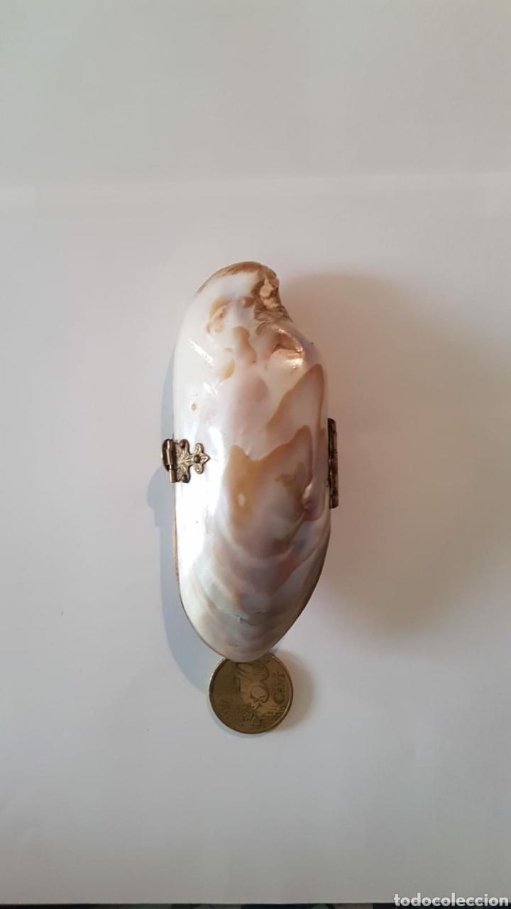 Antigüedades: Estuche monedero pintalabios concha nácar - Foto 5 - 154468477