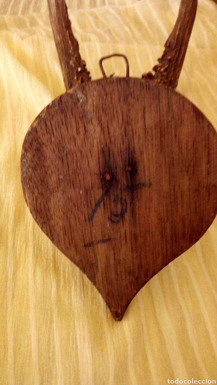 Antigüedades: Cornamenta de cervatillo. Muy antigua. Sobre base de madera. Vintage. - Foto 7 - 154652942
