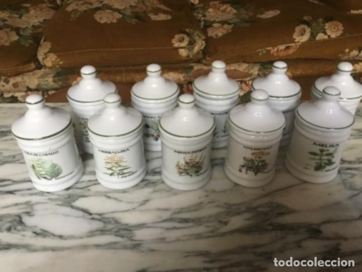 ALVARELOS PEQUEÑOS DE FARMACIA (Antigüedades - Cristal y Vidrio - Farmacia )