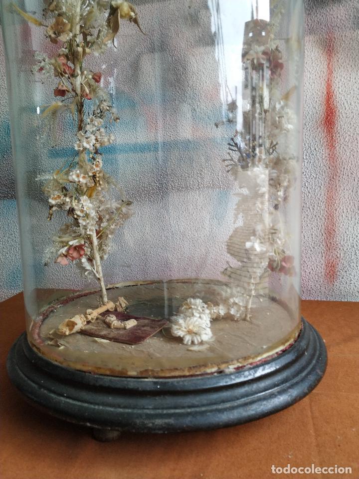 Antigüedades: Fanal de cristal antiguo sobre peana de madera. - Foto 4 - 155099374