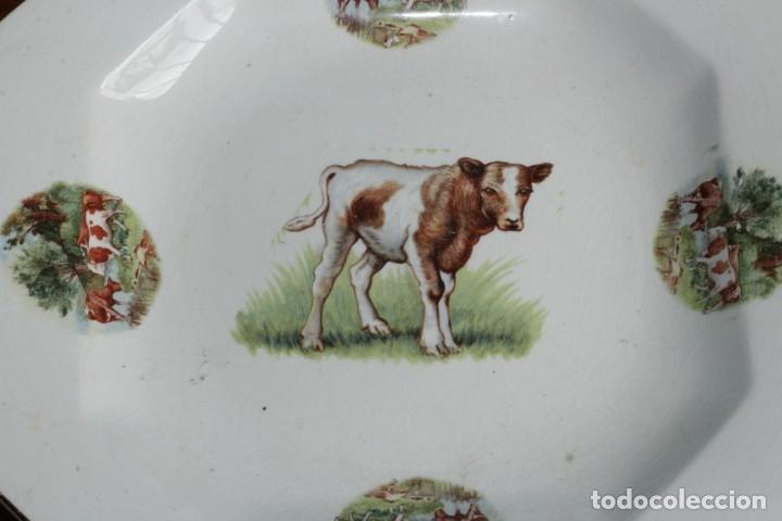 Antigüedades: ANTIGUO PLATO O FUENTE OCHAVADA DE PORCELANA PICKMAN MEDALLA ORO SEVILLA CON TERNEROS vacas - Foto 2 - 155599754