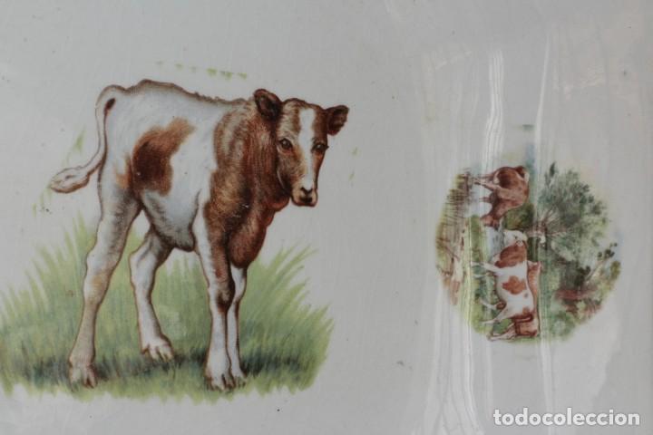 Antigüedades: ANTIGUO PLATO O FUENTE OCHAVADA DE PORCELANA PICKMAN MEDALLA ORO SEVILLA CON TERNEROS vacas - Foto 6 - 155599754