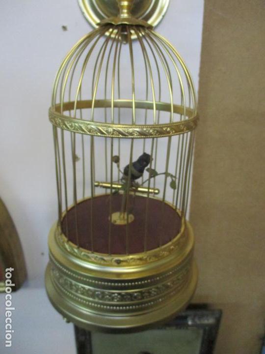 Antigüedades: Preciosa Jaula con Soporte de Bronce - Pájaro Colibrí, Autómata - Francia - Principios S. XX - Foto 8 - 156794682