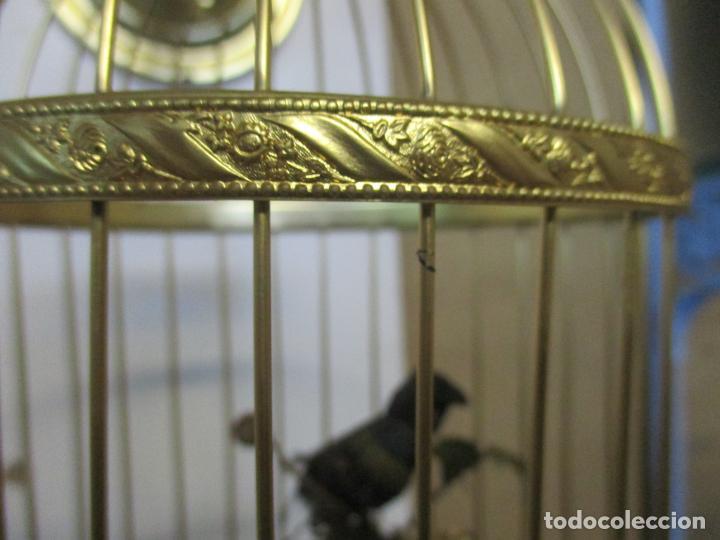 Antigüedades: Preciosa Jaula con Soporte de Bronce - Pájaro Colibrí, Autómata - Francia - Principios S. XX - Foto 9 - 156794682