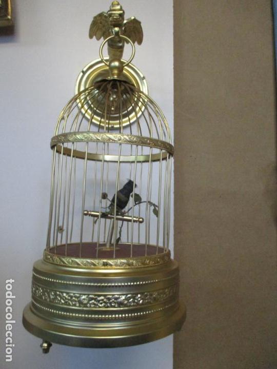 Antigüedades: Preciosa Jaula con Soporte de Bronce - Pájaro Colibrí, Autómata - Francia - Principios S. XX - Foto 12 - 156794682