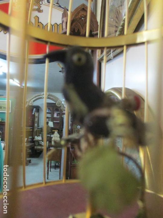 Antigüedades: Preciosa Jaula con Soporte de Bronce - Pájaro Colibrí, Autómata - Francia - Principios S. XX - Foto 14 - 156794682