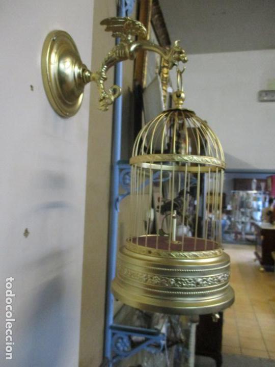 Antigüedades: Preciosa Jaula con Soporte de Bronce - Pájaro Colibrí, Autómata - Francia - Principios S. XX - Foto 24 - 156794682