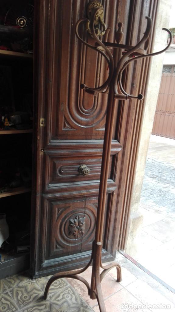 PERCHERO DE ÁRBOL THONET. PRINCIPIOS DEL SIGLO XX. (Antigüedades - Muebles Antiguos - Auxiliares Antiguos)