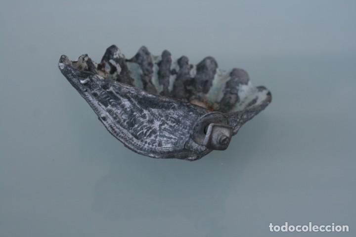 Antigüedades: ANTIGUA BENDITERA FORMA DE CONCHA POSIBLEMENTE DE ESTAÑO PREPARADA PARA COLGAR - Foto 3 - 158716018