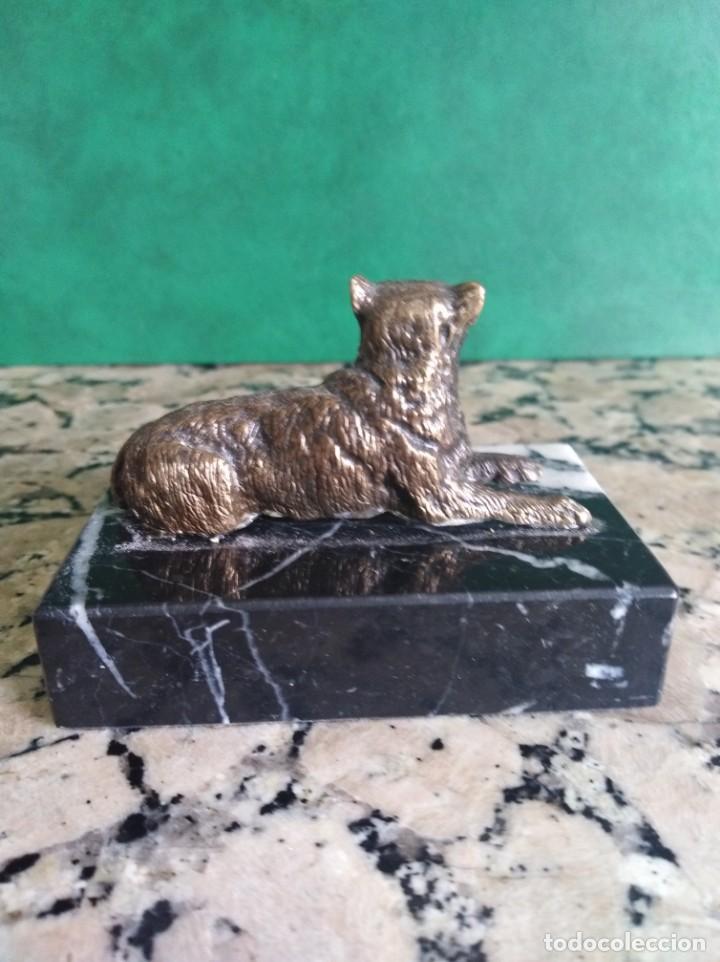 Antigüedades: Perro en bronce sobre pedestal de marmol - Foto 2 - 159488206