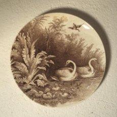 Antigüedades: PLATO FRANCÉS DE SARREGUEMINES. Lote 159793646