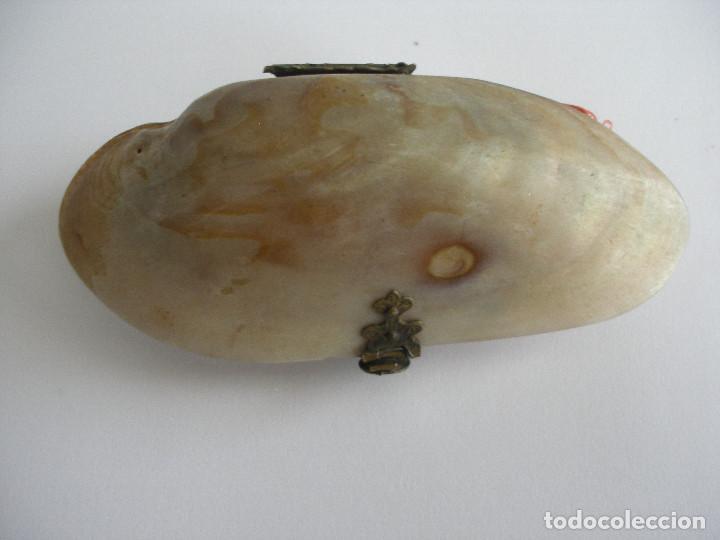 Antigüedades: Antiguo monedero concha S.XIX - XX - Foto 10 - 160034002
