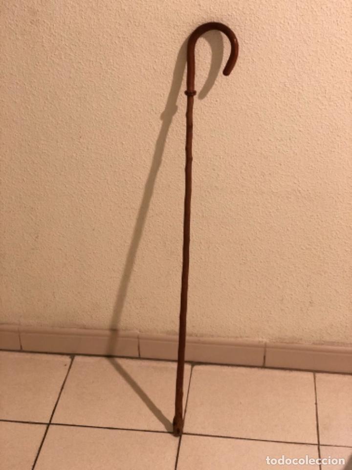 Antigüedades: Bastón Empuñadura de cuero - Foto 2 - 160677958