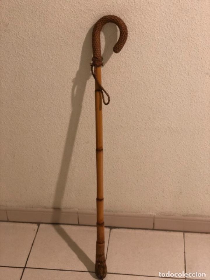 Antigüedades: Bastón Empuñadura de cuero - Foto 2 - 160713898