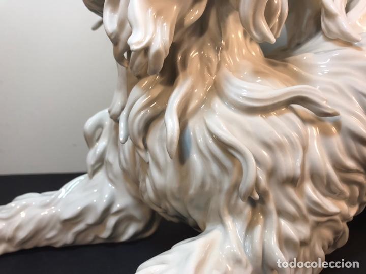 Antigüedades: Figura Porcelana- España- Algora- Perro Boloñés- 40x19x24 cm. - Foto 3 - 163490364