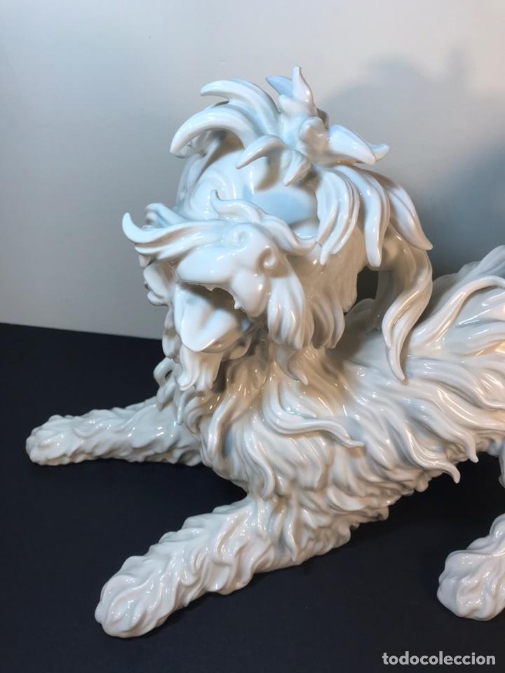 Antigüedades: Figura Porcelana- España- Algora- Perro Boloñés- 40x19x24 cm. - Foto 9 - 163490364