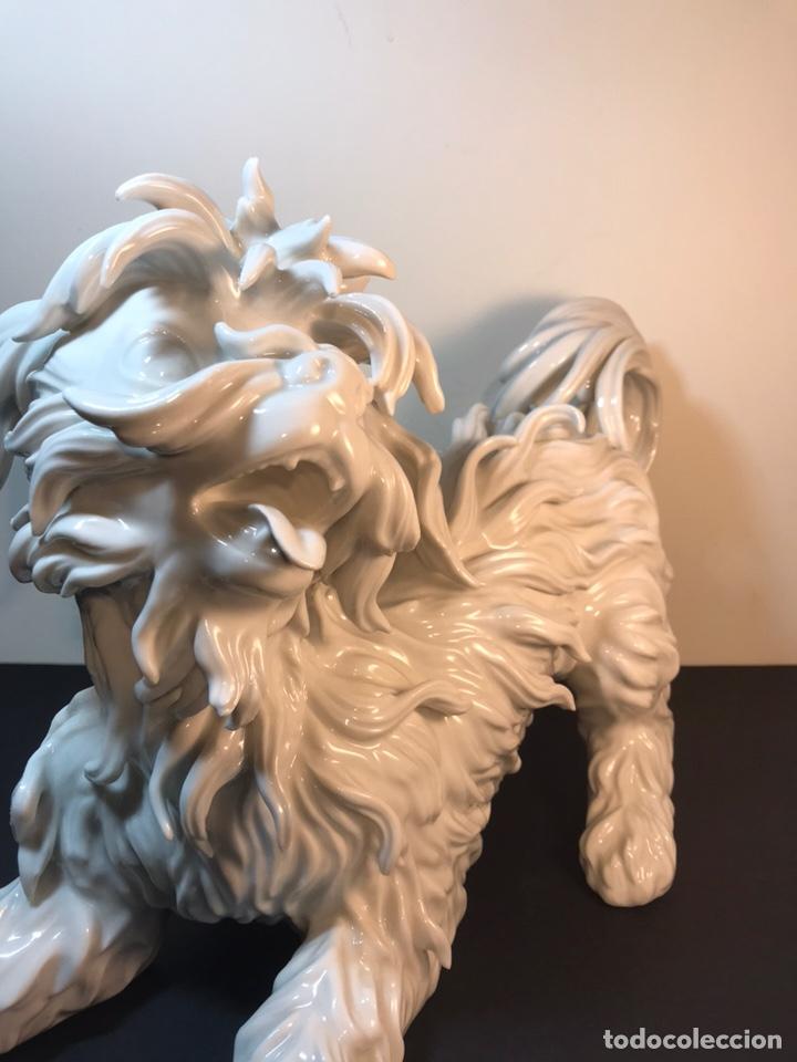 Antigüedades: Figura Porcelana- España- Algora- Perro Boloñés- 40x19x24 cm. - Foto 13 - 163490364