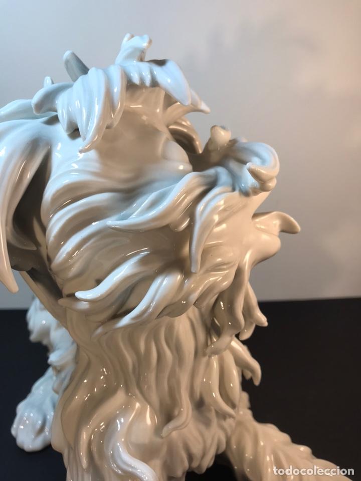 Antigüedades: Figura Porcelana- España- Algora- Perro Boloñés- 40x19x24 cm. - Foto 15 - 163490364