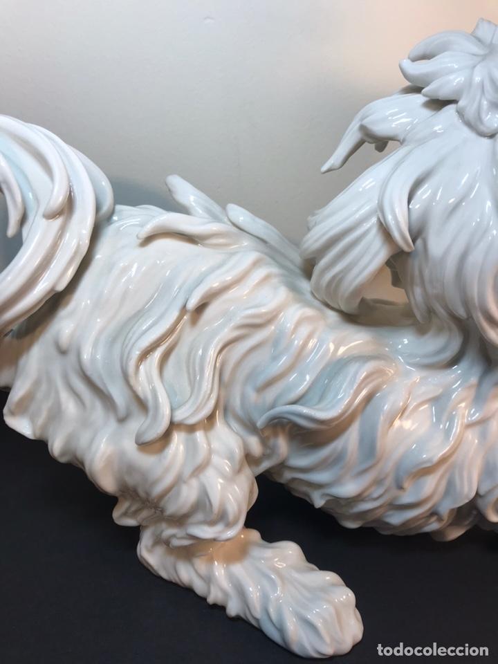 Antigüedades: Figura Porcelana- España- Algora- Perro Boloñés- 40x19x24 cm. - Foto 22 - 163490364