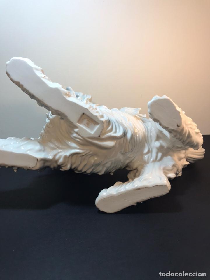 Antigüedades: Figura Porcelana- España- Algora- Perro Boloñés- 40x19x24 cm. - Foto 32 - 163490364