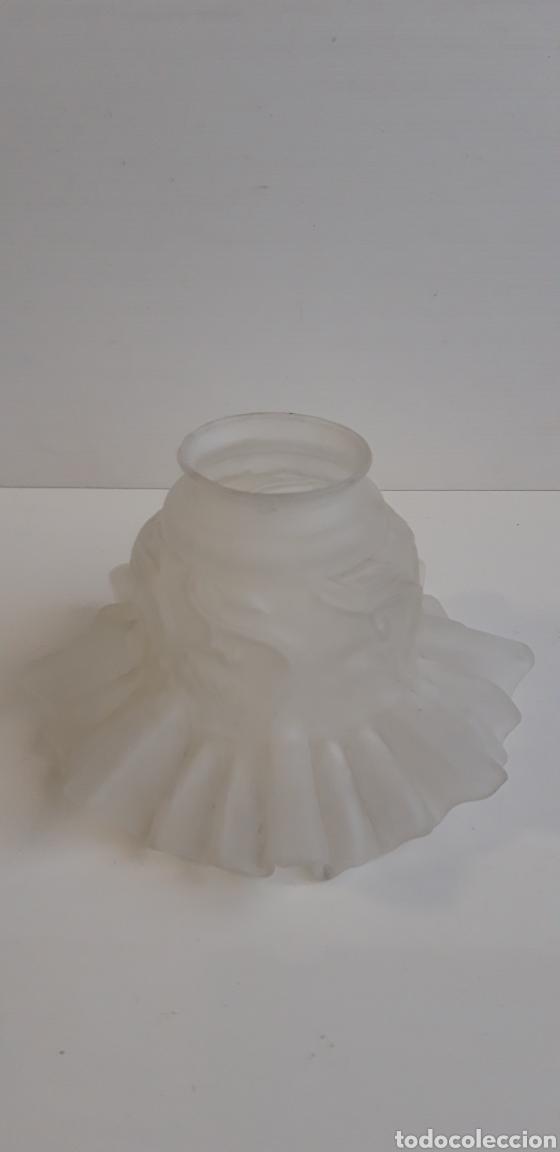 ANTIGUA TULIPA DE CRISTAL MATE (Antigüedades - Iluminación - Lámparas Antiguas)
