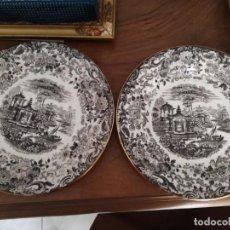 Antigüedades: 2 PLATOS PICKMAN DE LA CARTUJA.. Lote 163792478