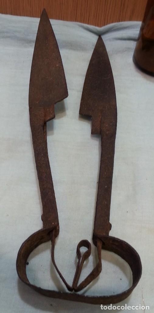 Antigüedades: Tijeras esquiladoras de ovejas. Impresionante herramienta antigua - Foto 2 - 165592642