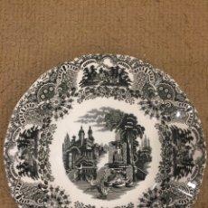 Antigüedades: PLATOS PICKMAN. Lote 161111713