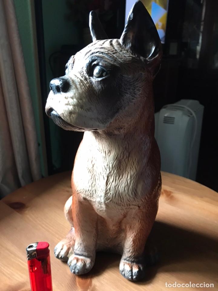 Antigüedades: Figura de perro Bóxer estuco y pintado a mano , antiguo - Foto 2 - 168178952