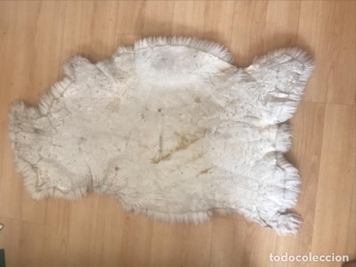 Antigüedades: alfombra de lana de oveja pura,pelo largo y rizado con la piel por la parte posterior,suelo o pared - Foto 2 - 169394232