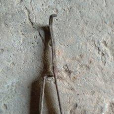 Antigüedades: RARA PINZA. Lote 169803168
