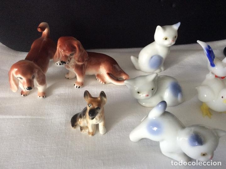 Antigüedades: Conjunto de animales en miniatura realizados en cristal de Murano y en Porcelana,ideal colección - Foto 3 - 171053818
