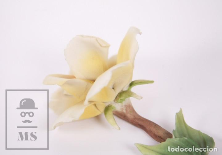 Antigüedades: Figura Flor / Rosa Amarilla de Porcelana Biscuit Estilo Capodimonte - Medidas 8 x 12,5 x 5,5 cm - Foto 4 - 171302907