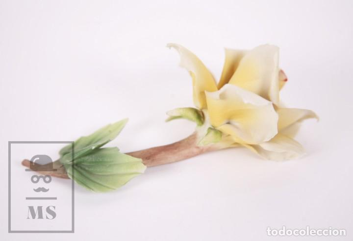 Antigüedades: Figura Flor / Rosa Amarilla de Porcelana Biscuit Estilo Capodimonte - Medidas 8 x 12,5 x 5,5 cm - Foto 6 - 171302907
