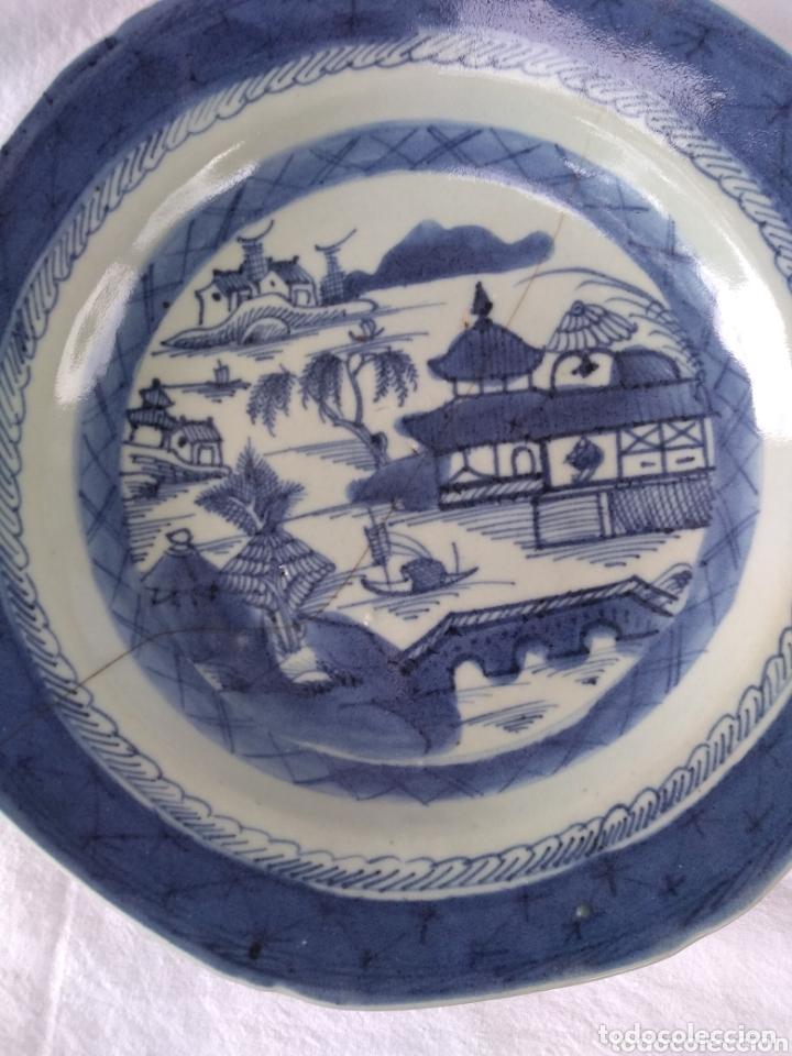 PLATO CHINO (Antigüedades - Porcelanas y Cerámicas - China)