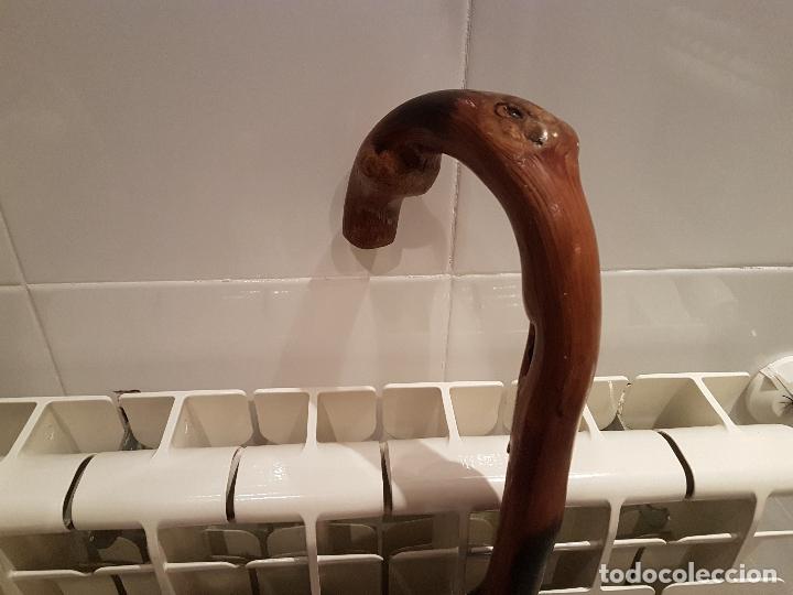 Antigüedades: antiguo baston grarrota hermandad de san frutos del duraton ver fotos - Foto 3 - 172756380