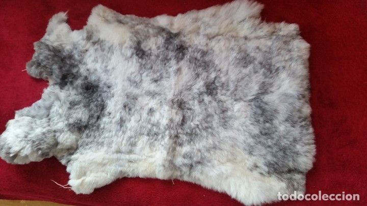 Antigüedades: MAGIFICA Alfombra de piel natural. ESTA NUEVA - Foto 2 - 173114082