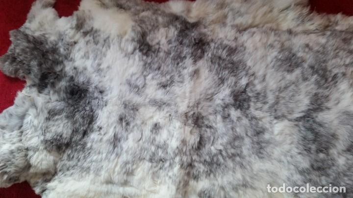 Antigüedades: MAGIFICA Alfombra de piel natural. ESTA NUEVA - Foto 3 - 173114082