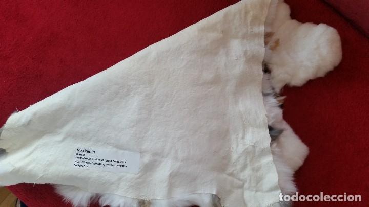 Antigüedades: MAGNIFICA alfombra de piel natural sin ESTRENAR - Foto 5 - 173114707