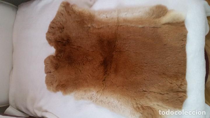 Antigüedades: EXPLENDIDA Alfombra de piel natural. Sin estrenar - Foto 7 - 173115117