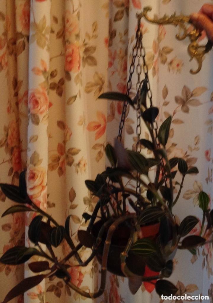 Antigüedades: Colgante para plantas, en latón. - Foto 3 - 173534949