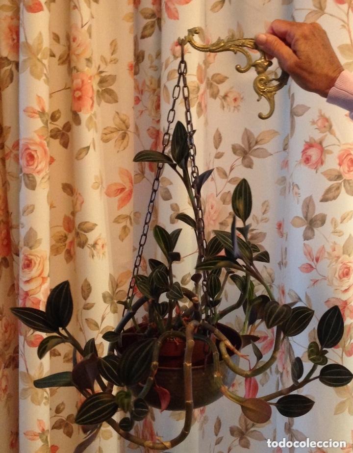 Antigüedades: Colgante para plantas, en latón. - Foto 4 - 173534949
