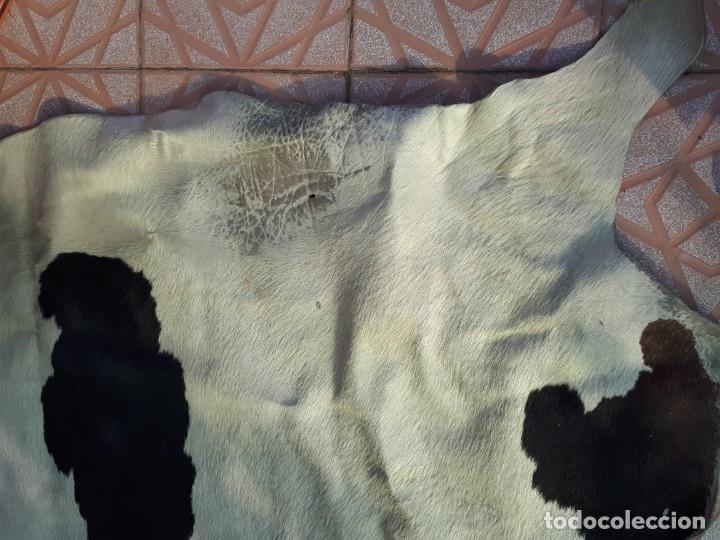Antigüedades: alfombra de piel de vaca - Foto 3 - 174523647