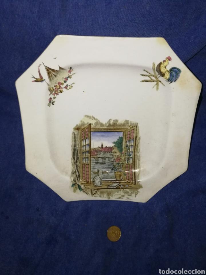 PLATO PORCELANA DECORADO (Antigüedades - Porcelanas y Cerámicas - Otras)