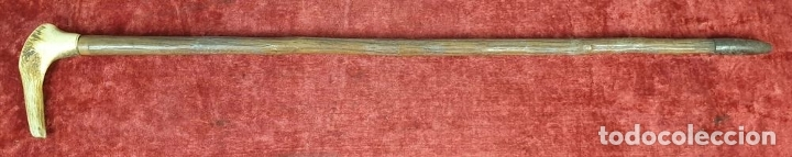 Antigüedades: BASTÓN DE PASEO. PUÑO DE HUESO TALLADO. CAÑA DE MADERA. REMATE DE METAL. SIGLO XX. - Foto 2 - 175953975