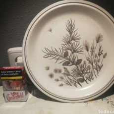 Antigüedades: PLATO DE PORCELANA PINEWOOD MADE IN ENGLAND. Lote 176494203
