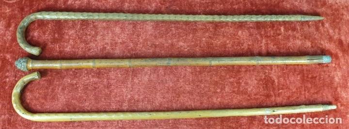 Antigüedades: CONJUNTO DE 3 BASTONES. MADERA TALLADA Y BAMBÚ. PRINCIPIOS SIGLO XX. - Foto 6 - 176548283