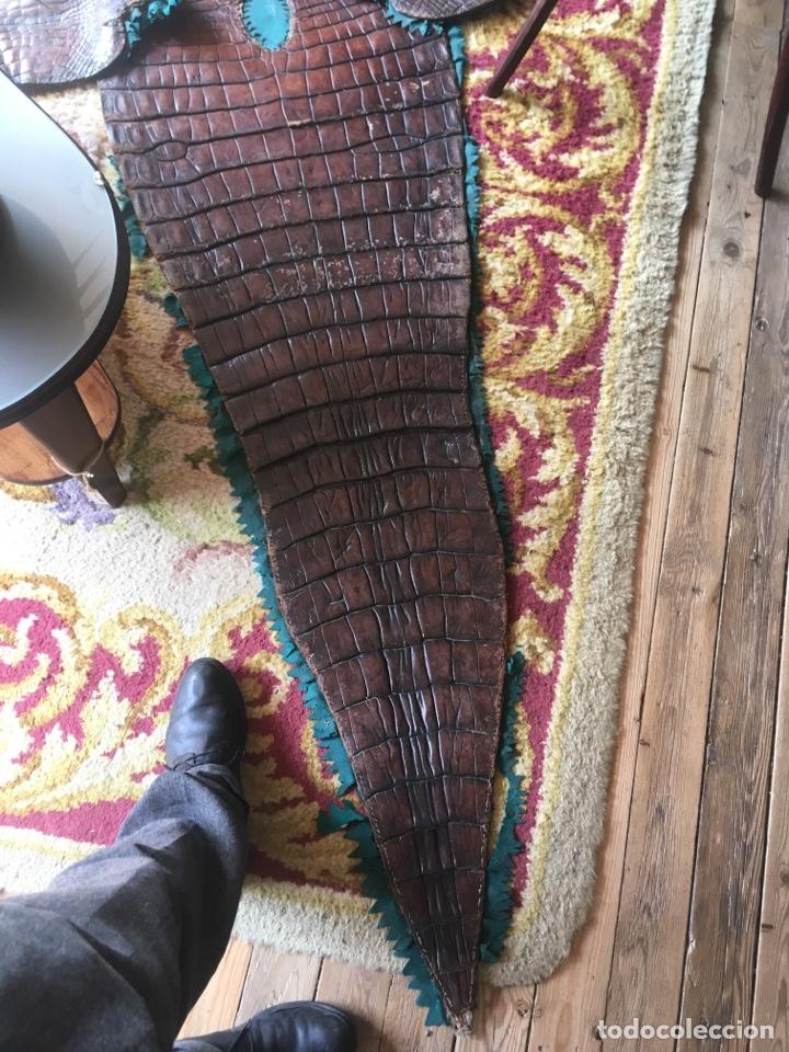 Antigüedades: Alfombra cocodrilo caimán antigua - Foto 2 - 176649469