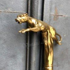 Antigüedades: BASTÓN CON MANGO DE BRONCE - PANTERA. Lote 174290777