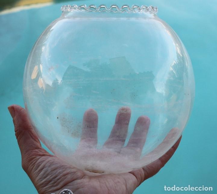 Antigüedades: Pecera de cristal soplado - Foto 6 - 177054474